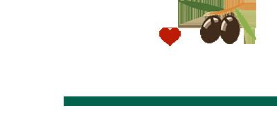 Hartville Cucina logo
